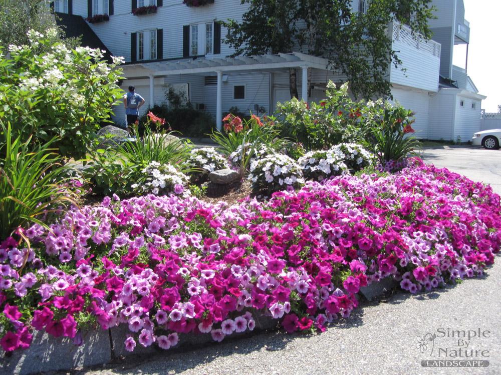 Flower garden design simple by nature lanscape for Annual garden designs